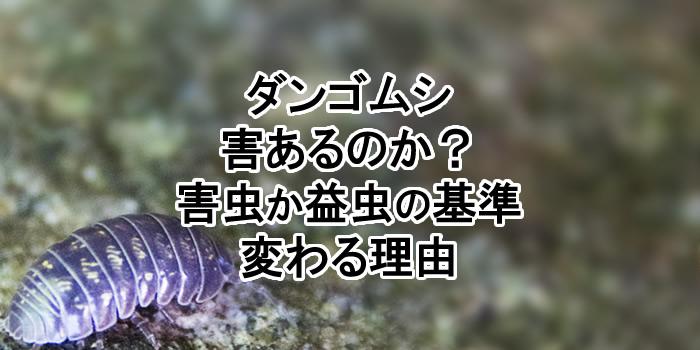 害 ダンゴムシ